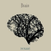 Brain von Mr Rudolf