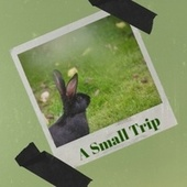 A Small Trip de Various Artists