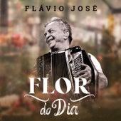 Flor do Dia von Flavio José