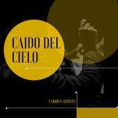 Caido del Cielo von Juan D'Arienzo and his Orchestra, Bianco Bachicha Tango - Orchester, Adolfo Carabelli