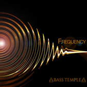 Frequency by Shakti