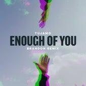 Enough Of You (BRANDON Remix) de Tujamo