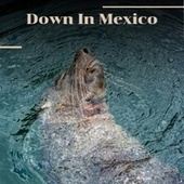 Down In Mexico by Various Artists