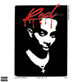 Whole Lotta Red de Playboi Carti