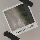 Canto De Ossanha de Various Artists