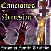 Canciones en Procesión. Semana Santa Cantada by Various Artists