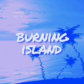 Burning Island (Mad Electro House Collection), Vol. 4 by Various Artists