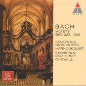 Bach, JS : Motets BWV Nos 225 - 230 von Nikolaus Harnoncourt