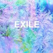 Exile von MusicWithSagar