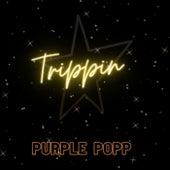 TRIPPIN by Ben