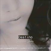 Destino by Jennifer Juan