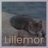 Lillemor by Various Artists