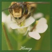 Honey fra Various Artists
