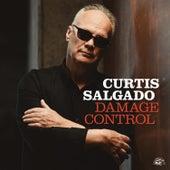 Damage Control by Curtis Salgado