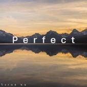 Perfect (Instrumental Version) von Veronwu