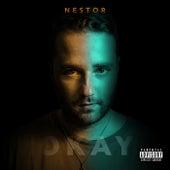 Okay de Nestor