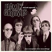 At Full Speed - The Complete Sire Recordings by The Flamin' Groovies