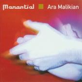 Manantial de Ara Malikian