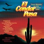 El Condor Pasa von Anthony Ventura