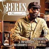 No Goodbye by Beres Hammond