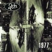 1977 von Ash