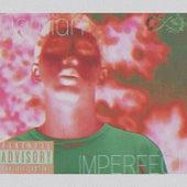Imperfect de Damian