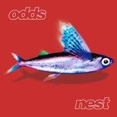 Nest by Odds