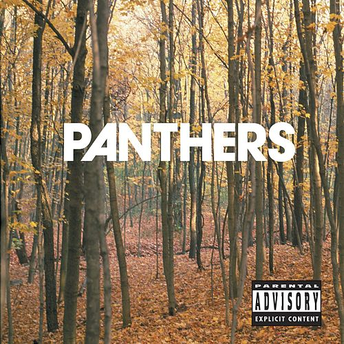 Things Are Strange by Panthers