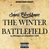 The Winther battlefield de Sonii Blackbone