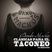 Clasicas para el Taconeo de Banda Machos