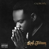 King's Testimony by C.A. Brown