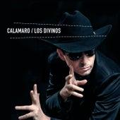 Los divinos de Andres Calamaro