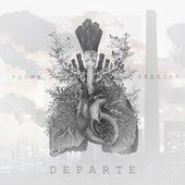 Departe (feat. Skeejah) de Plumb