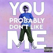 You Probably Don't Like Me by Kysaac