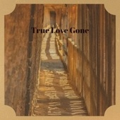 True Love Gone by Various Artists