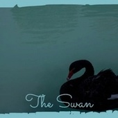 The Swan van Various Artists