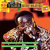 Most Wanted de Tiger