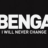 I Will Never Change de Benga