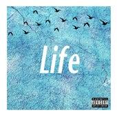 Life by Jon Allen