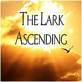 The Lark Ascending di Andrew Davis
