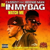 In My Bag by Cassidy