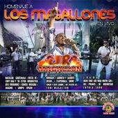 Homenaje A Los Magallones (En Vivo) von El Jr. Magallon