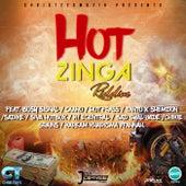 Hot Zinga Riddim by Various Artists