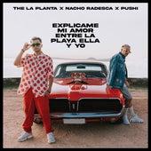 Entre La Playa Ella Y Yo / Explicame Mi Amor by The La Planta Pushi
