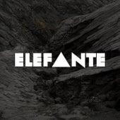 Elefante by Elefante