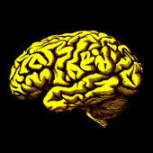 Braindead von Karlman