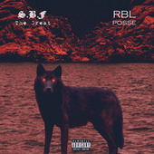 Real Life by R.B.L. Posse