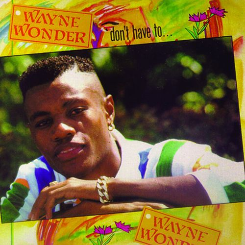 Don't Have To by Wayne Wonder