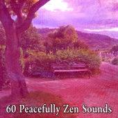 60 Peacefully Zen Sounds de Massage Tribe