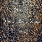 75 Peaceful Bedrest Sounds by S.P.A